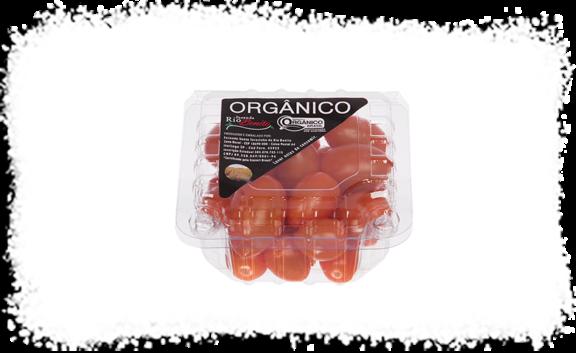 Tomate Golden Grape Fazenda Rio Bonito