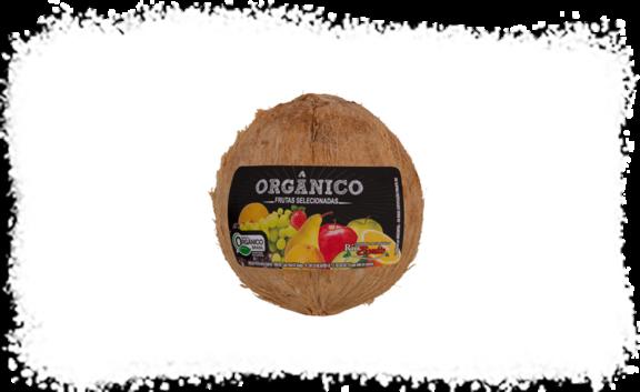 Coco seco Orgânico Fazenda Rio Bonito